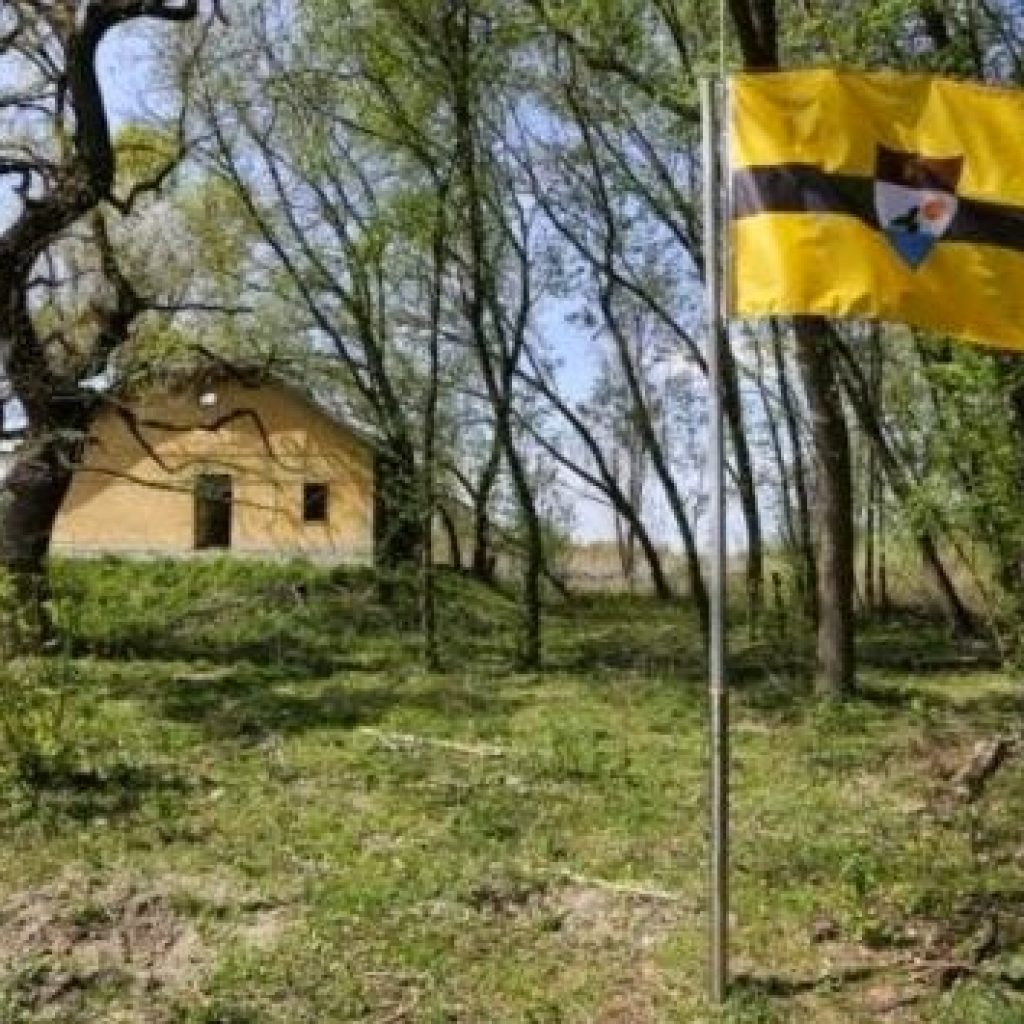 Liberland, mislukte invasie